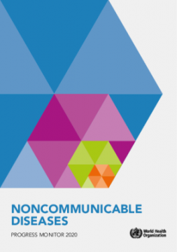 Noncommunicable Diseases – Progress Monitor 2020